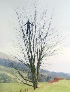 Andy Goldsworthy, Artist, Leaning into the Wind